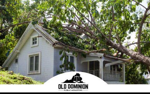Old Dominion Public Adjusters (10)